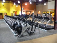 Decorating A Comercial Carpeted Gym