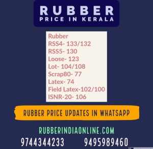 Live news of Kerala Rubber Market on your mobile.To know the exact rubber price in Kerala please subscribe our service.