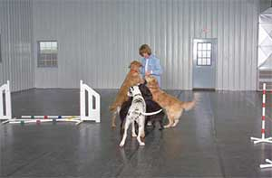 Rubber floor mats for dog kennels  stalls  Linear Rubber