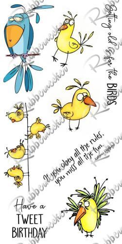 Rubbernecker Blog RN-Birds-Set-250x500