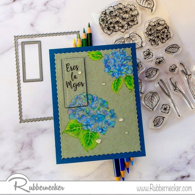 a card showing colored pencil techniques - bright colors over dark card stock using detailed stamps of flowers from Rubbernecker