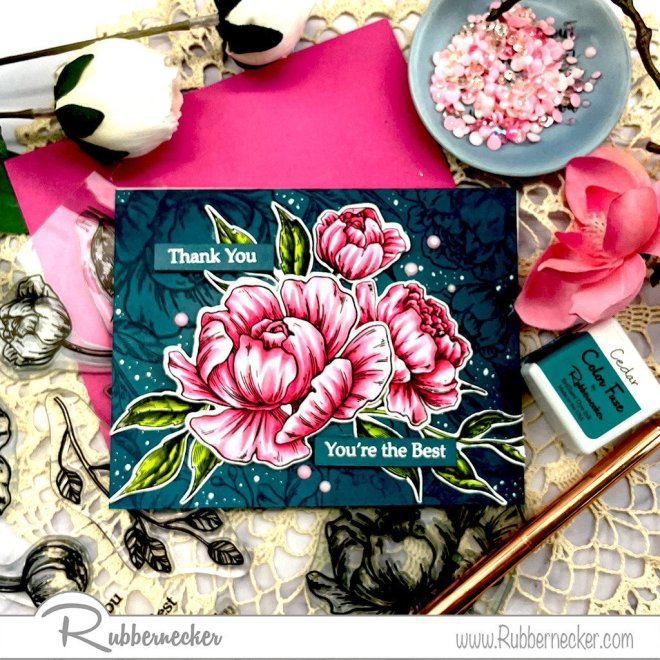 see how to use the same rubber stamps two ways on one card shown on two different card with hand stamped, colored and die cut flowers from Rubbernecker