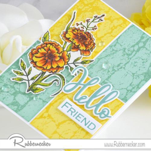 Rubbernecker Blog Hello-Friend-Card-by-Annie-Williams-for-Rubbernecker-Detail-500x500