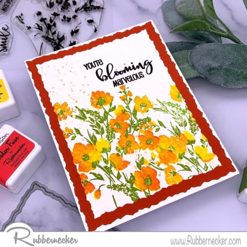 Rubbernecker Blog Amazing-Blooms-Orange-500x500