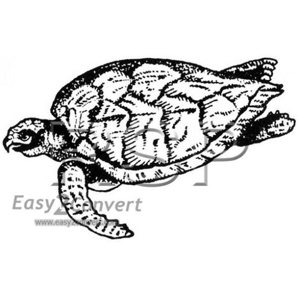 STAMP Honu Sea Turtle