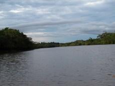 Cuyabeno - Ecuador (2010)