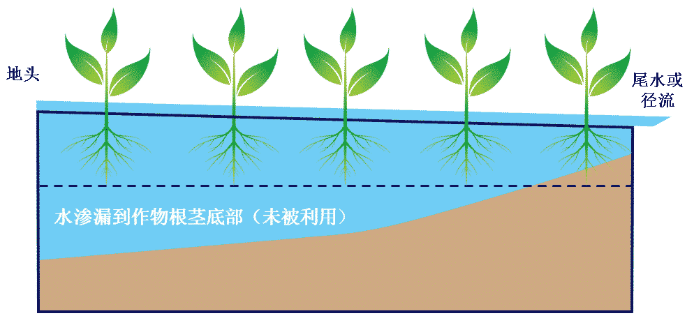 infiltration-blow-root-zone-cn