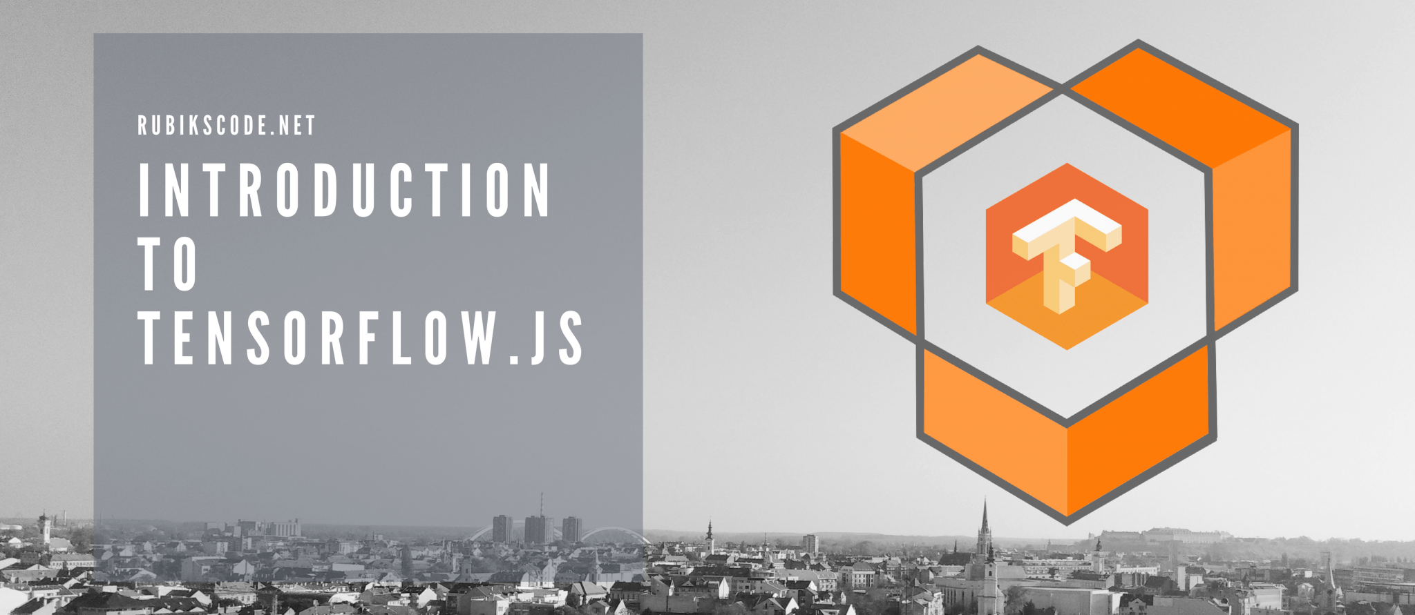 Introduction to Tensorflow js with Real-World Example