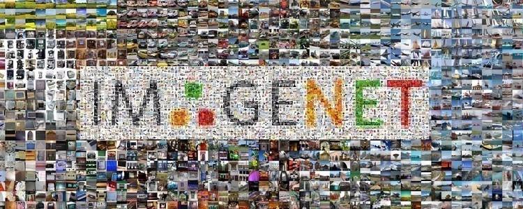 ImageNet Dataset Visual