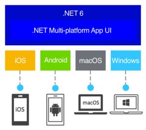 .NET 6 MAUI Capabilities
