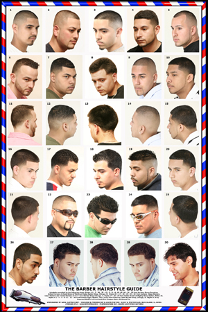 The Barber Hairstyle Guide Poster 061HSM  Rubinovs