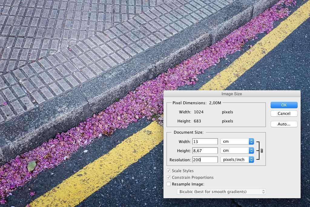Cambiando el tamaño de la imagen en Photoshop.