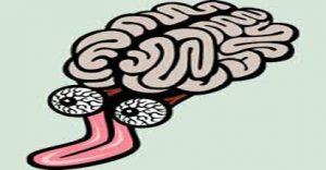 cervello-con-la-lingua416x216