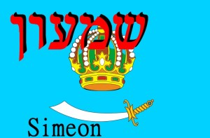 12 twelve tribes of israel simeon flag