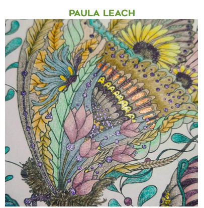 ButterflyPaula