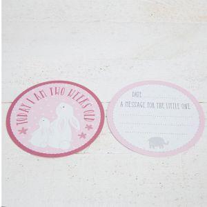 Baby Girl Pink Milestone Cards