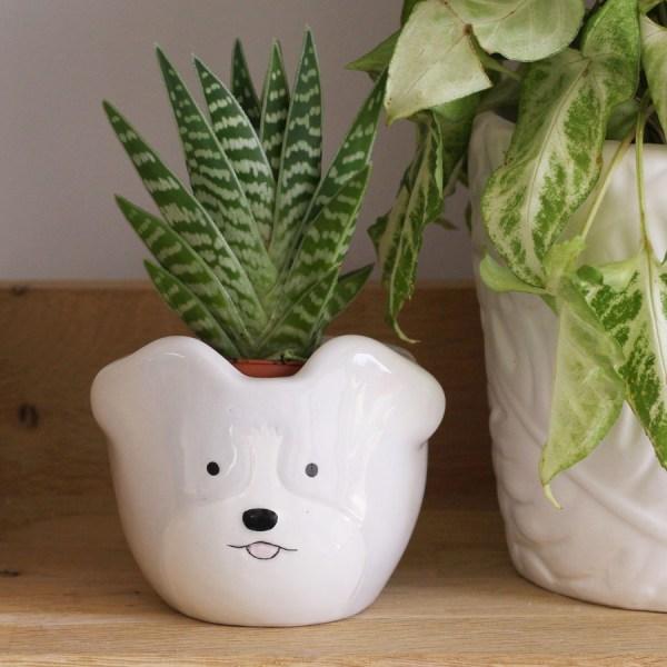 Mini Dog Planter Pot