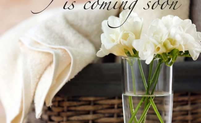 A Fresh New Look Is Coming Soon At Rubywaxx