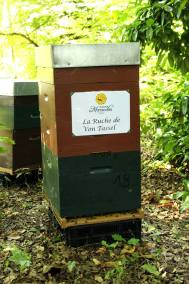 parrainer ruche 41- rucher de marandou