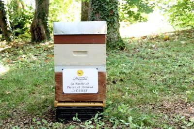 parrainer ruche 2 - rucher de marandou