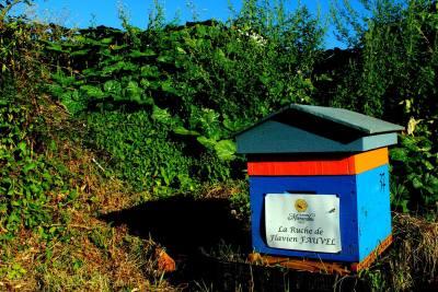 parrainer ruche 22- rucher de marandou