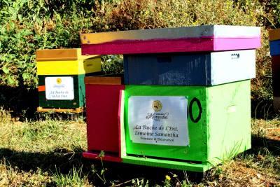 parrainer ruche 16 - rucher de marandou