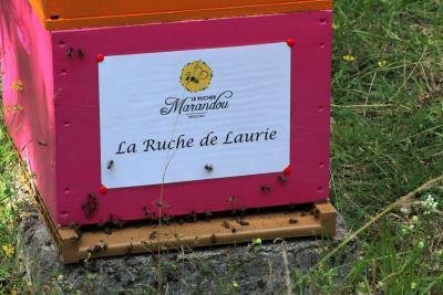 parrainer ruche 6- rucher de marandou