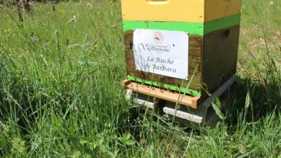 parrainer ruche 12 - rucher de marandou