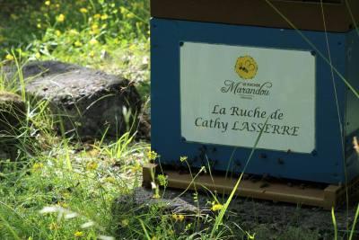 parrainer ruche 34 - rucher de marandou