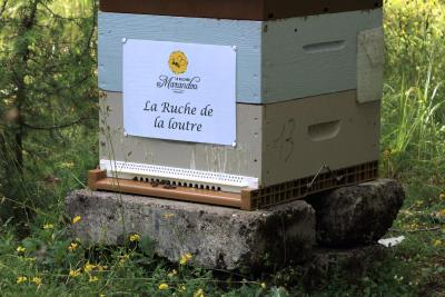 parrainer ruche 8 - rucher de marandou