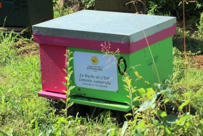 parrainer ruche 28- rucher de marandou