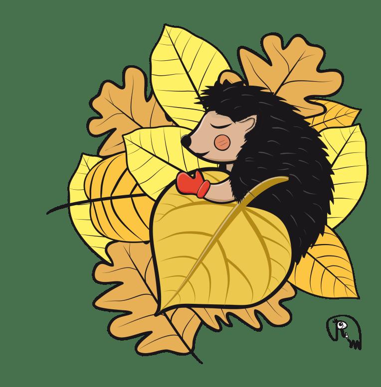 hedgehog - character design