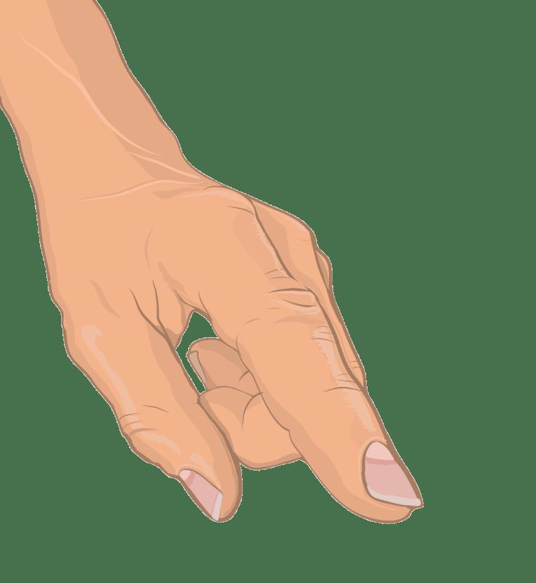 Medizinische Illustration - Anatomische Zeichnung der menschlichen Hand (Vektorgrafik)