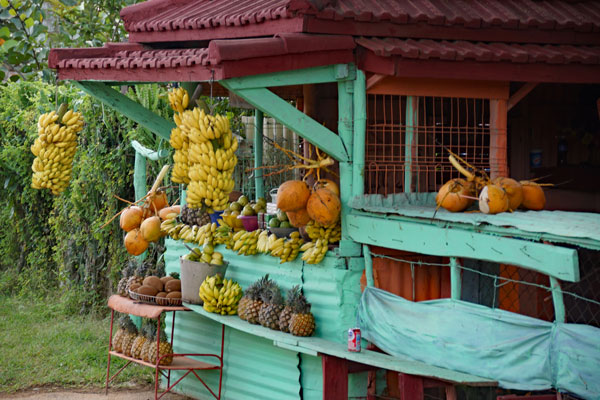 Straßen Früchte Laden in Kuba