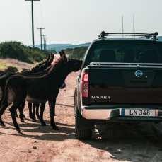 drogi-na-cyprze-północnym