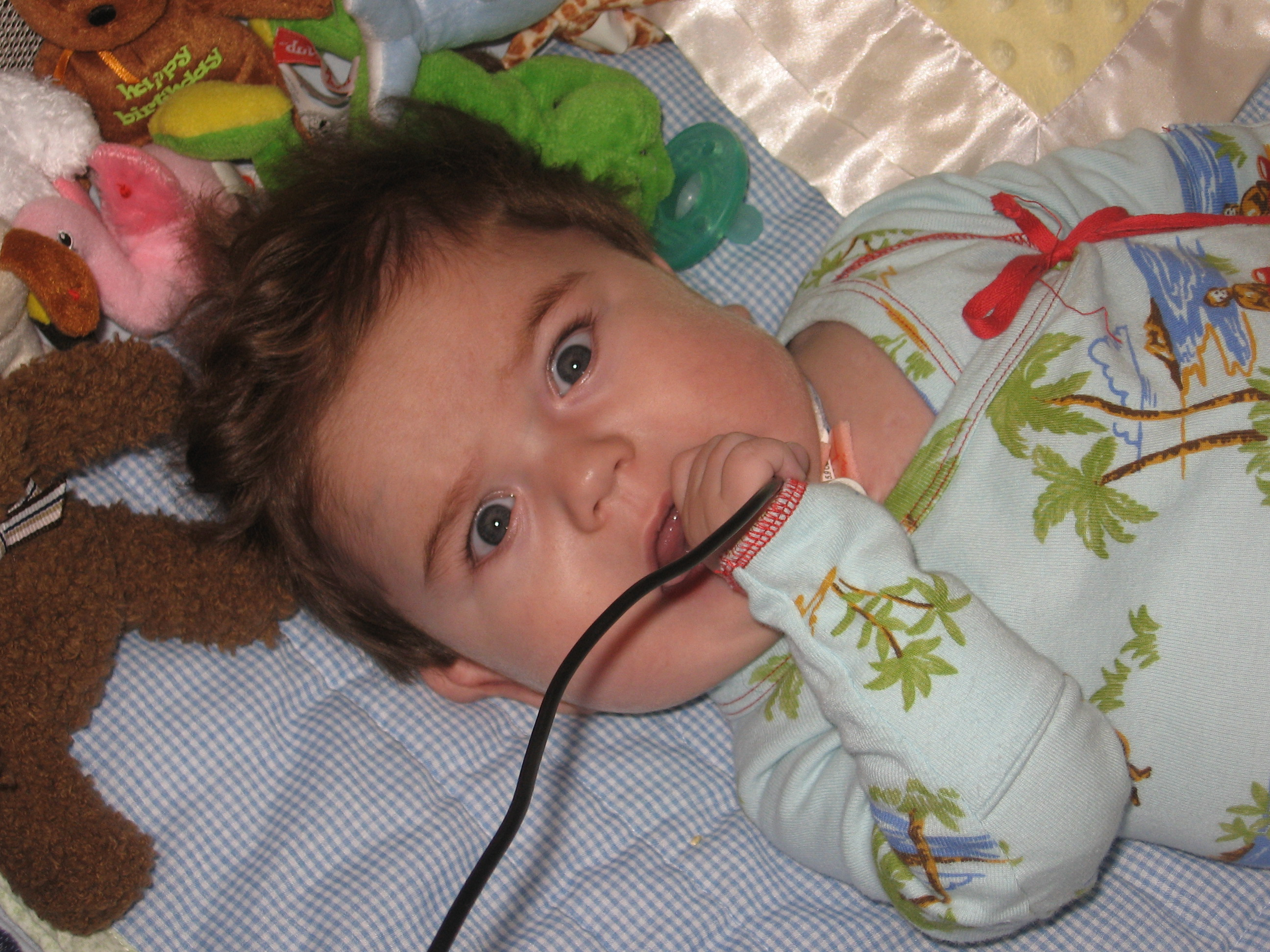 """""""Look Mommy!  I can chew on the suction unit electrical cord!""""  O, good grief!"""