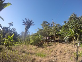 meluchas house