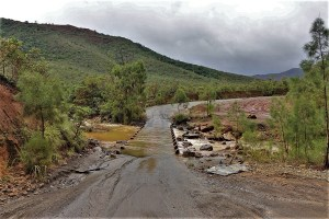 Brücke in den Bergen von Neukaledonien