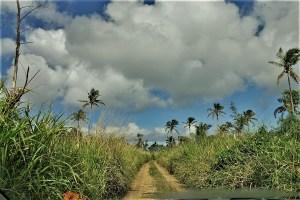 Nebenstraße auf Tonga