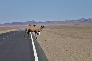 Highway in Mongolia