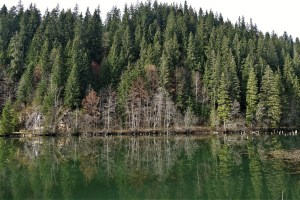 Lacul Rosu, Rumänien