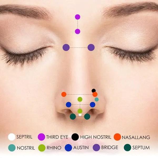 סגנונות עגיל באף