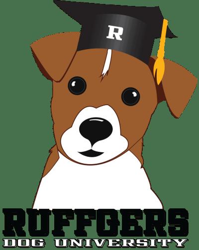 Dog boarding, day care and training university