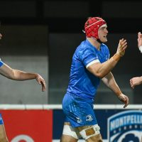 Leinster's Champions Cup Clash With Toulon Has Just Been Cancelled