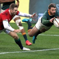 Evidence Shows That The Decision To Disallow Willie Le Roux's Try Was Correct
