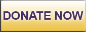 Image of the Donate Now Button