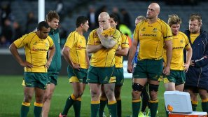 wallabies-v-all-blacks
