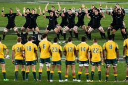 AUCKLAND, NEW ZEALAND - AUGUST 15: The All Blacks perform the haka during The Rugby Championship, Bledisloe Cup match between the New Zealand All Blacks and the Australian Wallabies at Eden Park on August 15, 2015 in Auckland, New Zealand. (Photo by Hagen Hopkins/Getty Images)