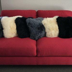 Cushion Decor in Auckland