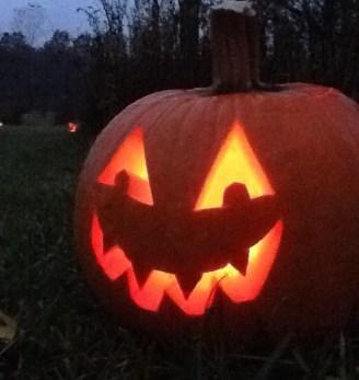 Pumpkins2019_1.jpg